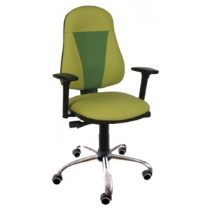 Pisarniški stol FENIX ACGT